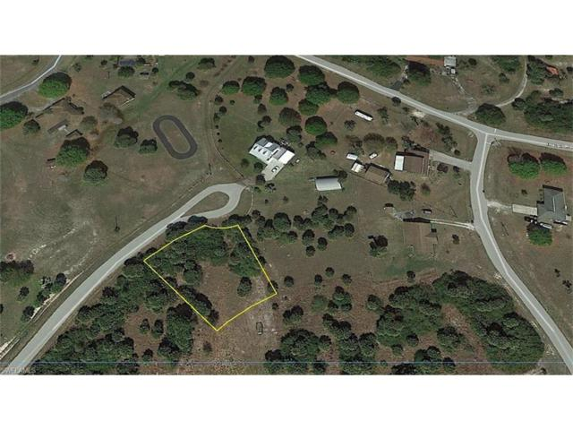 3760 Northside Rd, Moore Haven, FL 33471 (MLS #217033494) :: The New Home Spot, Inc.