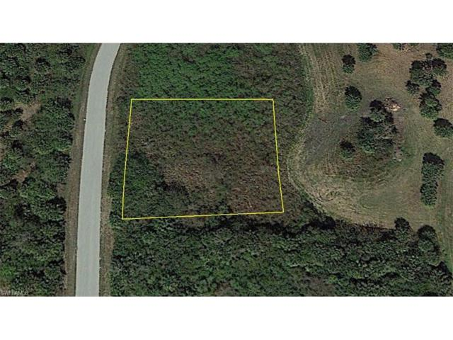 3900 Northside Rd, Moore Haven, FL 33471 (MLS #217033543) :: The New Home Spot, Inc.