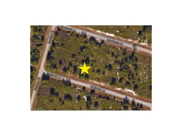 Benjamin Ln, North Port, FL 34288 (#217033743) :: Homes and Land Brokers, Inc