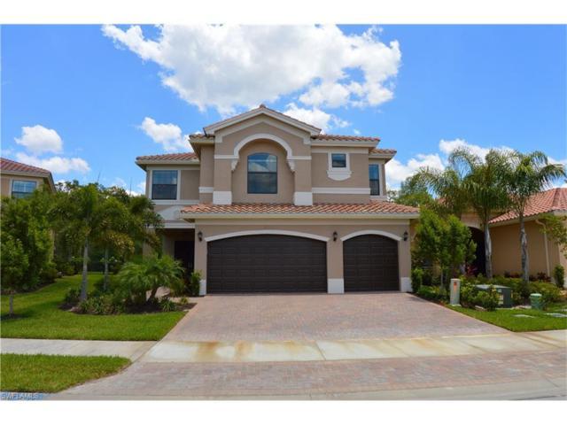 11556 Stonecreek Cir, Fort Myers, FL 33913 (MLS #217033826) :: The New Home Spot, Inc.
