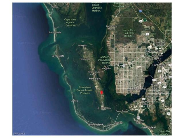 3837 Tropical Point Dr, St. James City, FL 33956 (#217033930) :: Homes and Land Brokers, Inc