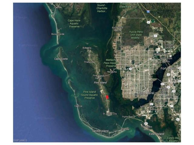 3821 Tropical Point Dr, St. James City, FL 33956 (#217033935) :: Homes and Land Brokers, Inc