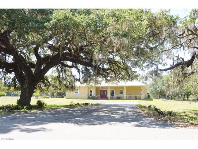4047 Oak Haven Dr, Labelle, FL 33935 (MLS #217034270) :: The New Home Spot, Inc.