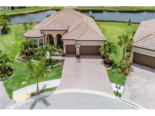 9126 Sandhill Crane Ct, Fort Myers, FL 33912 (MLS #217034714) :: The New Home Spot, Inc.
