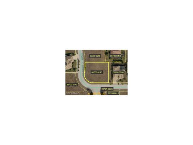 825 Palmetto Pointe Cir, Cape Coral, FL 33991 (MLS #217037217) :: The New Home Spot, Inc.
