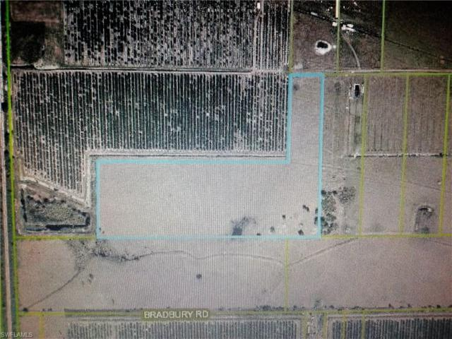 201 Angus Rd, Venus, FL 33960 (#217038095) :: Homes and Land Brokers, Inc