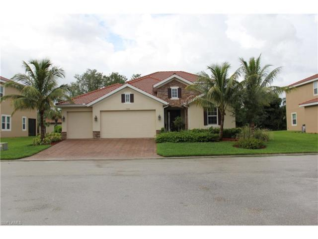 12606 Blue Banyon Ct, North Fort Myers, FL 33903 (MLS #217038370) :: The New Home Spot, Inc.