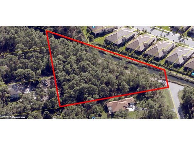 25357 Moriah Ln, Bonita Springs, FL 34135 (#217038560) :: Homes and Land Brokers, Inc