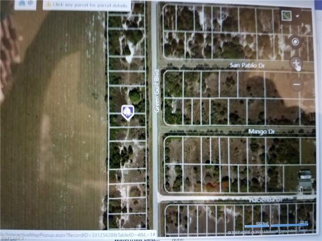 13429 Green Gulf Blvd, Punta Gorda, FL 33955 (#217039307) :: Homes and Land Brokers, Inc