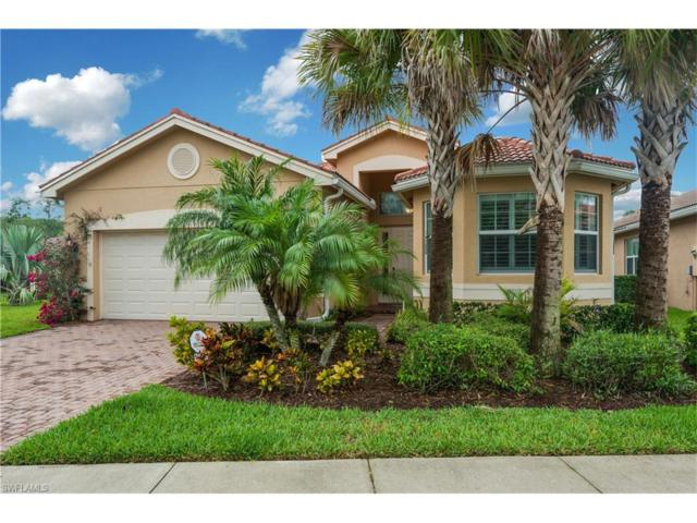 10087 Mimosa Silk Dr, Fort Myers, FL 33913 (MLS #217039561) :: The New Home Spot, Inc.