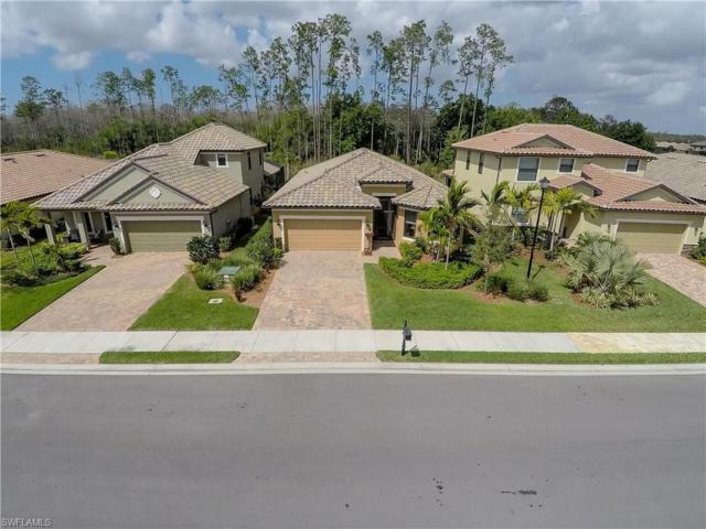 20308 Black Tree Ln, Estero, FL 33928 (#217039813) :: Homes and Land Brokers, Inc