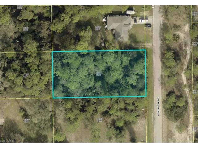 2315 Wellington Ave, Alva, FL 33920 (MLS #217040063) :: The New Home Spot, Inc.