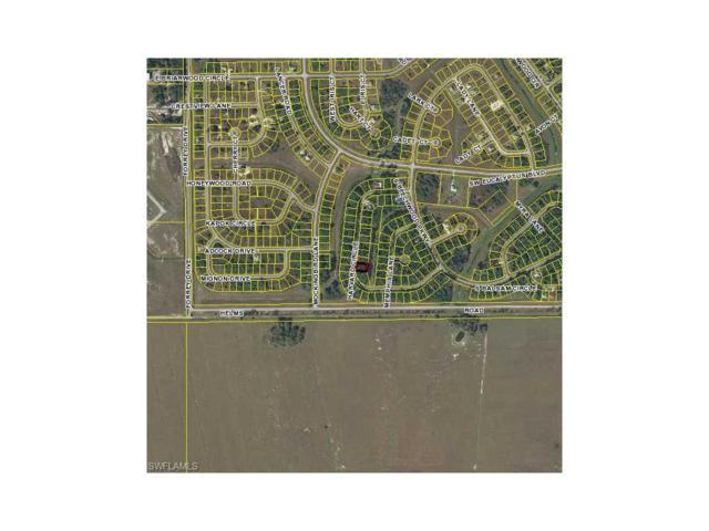 3036 Harvard Cir, Labelle, FL 33935 (MLS #217040096) :: The New Home Spot, Inc.