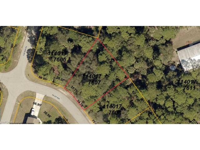 Silas Ave, North Port, FL 34288 (MLS #217040188) :: The New Home Spot, Inc.