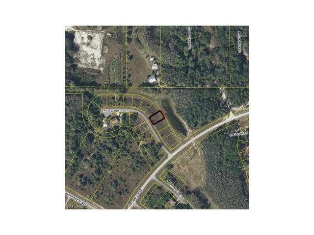 8008 Spice Ct, Labelle, FL 33935 (MLS #217040765) :: The New Home Spot, Inc.