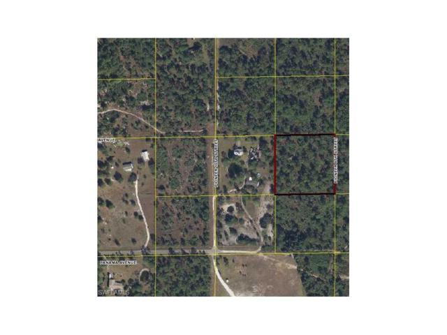 Pioneer 9th, Clewiston, FL 33935 (MLS #217040968) :: The New Home Spot, Inc.