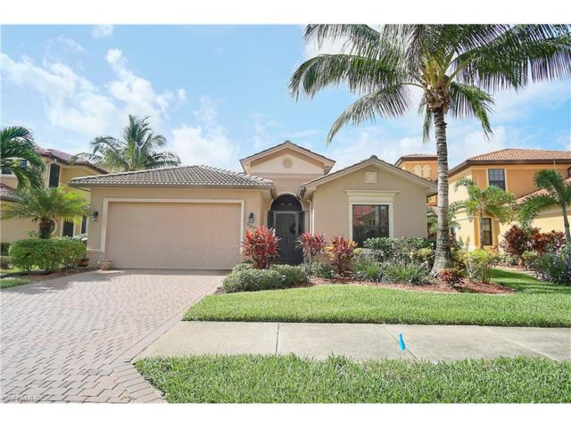 9276 River Otter Dr, Fort Myers, FL 33912 (MLS #217041043) :: The New Home Spot, Inc.