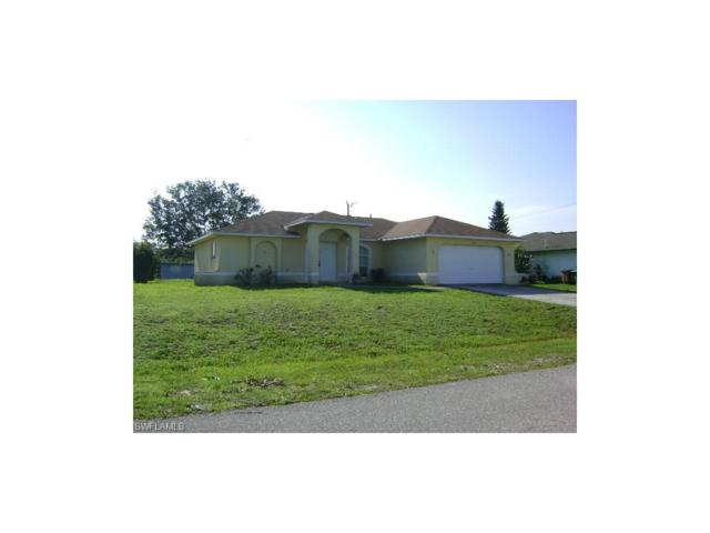 409 NE 23rd Pl, Cape Coral, FL 33909 (MLS #217041421) :: RE/MAX Realty Group