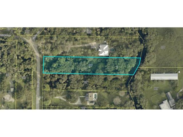 4421 Long Lake Dr, Fort Myers, FL 33905 (#217041707) :: Homes and Land Brokers, Inc