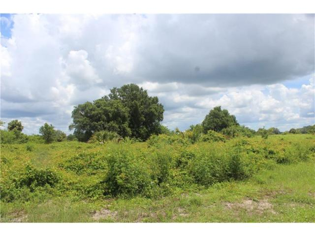 3055 Adcock Dr, Labelle, FL 33935 (MLS #217042231) :: The New Home Spot, Inc.