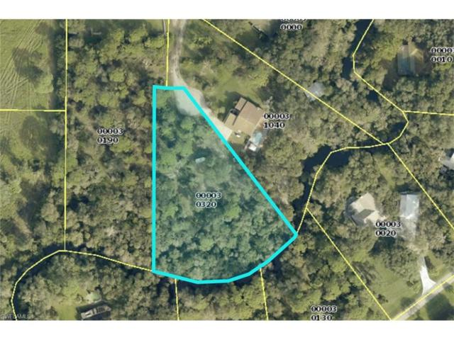 18701 Telegraph Creek Ln, Alva, FL 33920 (MLS #217042381) :: The New Home Spot, Inc.