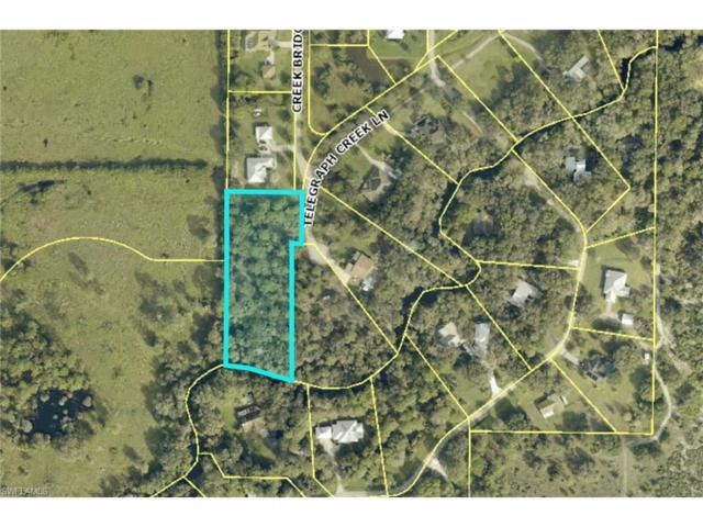 18751 Telegraph Creek Ln, Alva, FL 33920 (MLS #217042444) :: The New Home Spot, Inc.