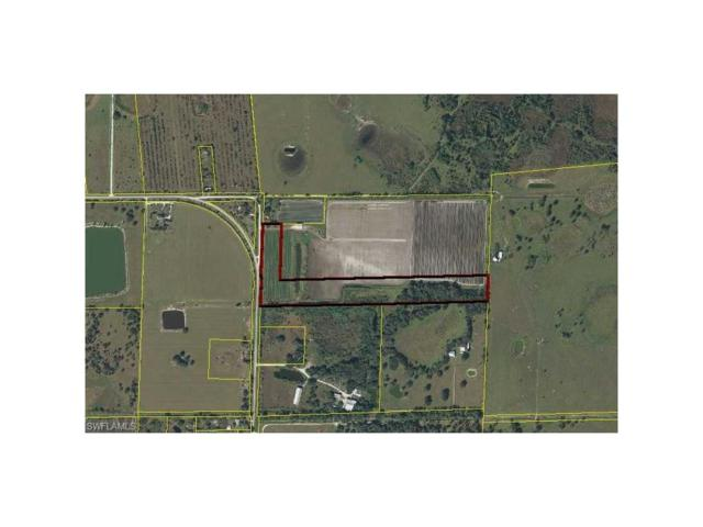 Weatherbee Rd, Felda, FL 33930 (MLS #217042479) :: The New Home Spot, Inc.