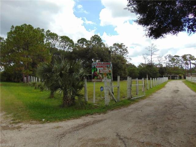 7161 Eastwood Acres Rd, Fort Myers, FL 33905 (#217043032) :: Homes and Land Brokers, Inc