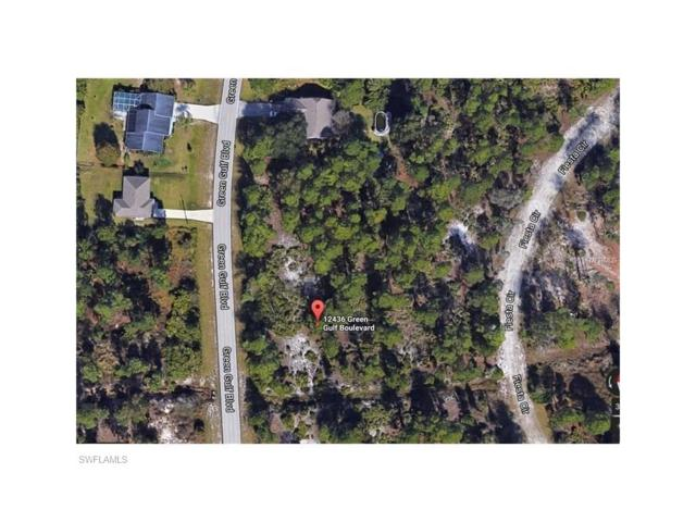 12436 Green Gulf Blvd, Punta Gorda, FL 33955 (#217043430) :: Homes and Land Brokers, Inc