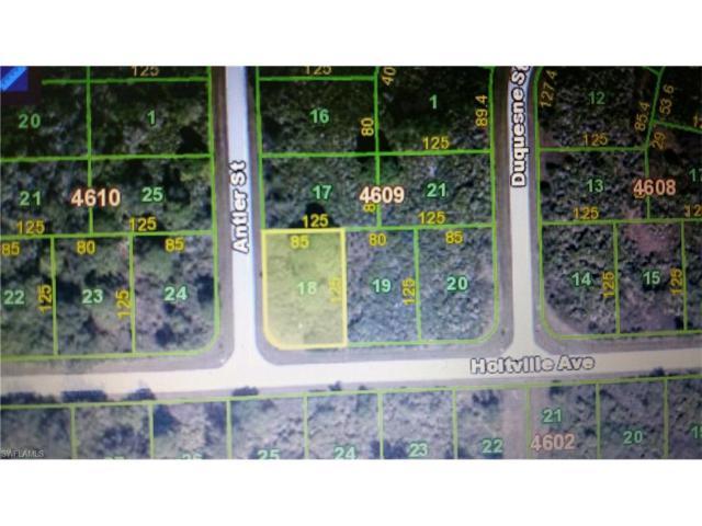 10056 Antler St, Port Charlotte, FL 33981 (#217043687) :: Homes and Land Brokers, Inc