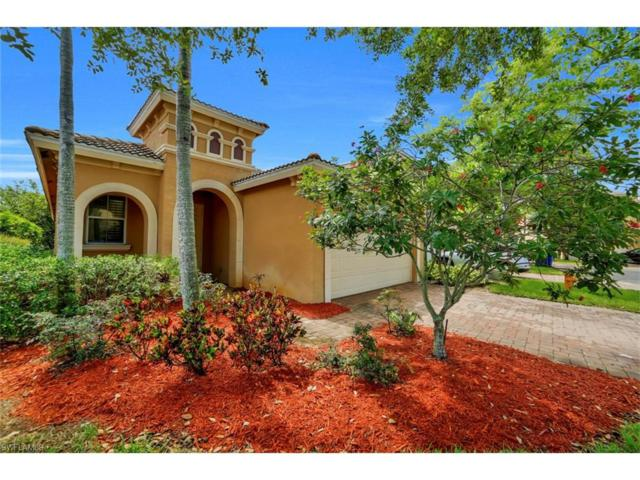 20610 Silver Palm Dr W, Estero, FL 33928 (#217044246) :: Homes and Land Brokers, Inc