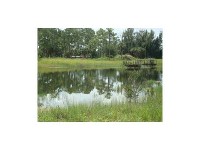 8240 Buckingham Rd, Fort Myers, FL 33905 (#217044428) :: Homes and Land Brokers, Inc