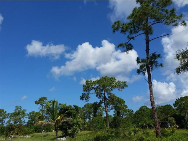 8563 Juneau Ct, Other, FL 33956 (MLS #217044688) :: The New Home Spot, Inc.