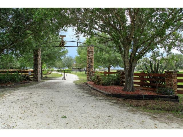 1442 SE West Farms Rd, Arcadia, FL 34266 (#217044700) :: Homes and Land Brokers, Inc