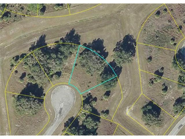 Zinnia Ct, Labelle, FL 33935 (#217044794) :: Homes and Land Brokers, Inc