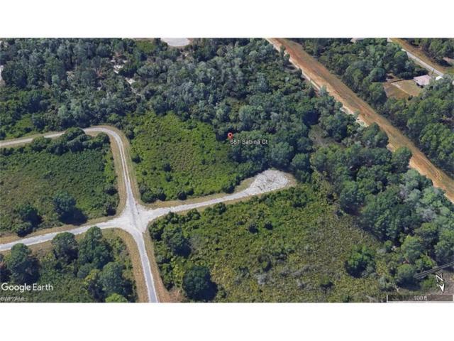 681 Sabina Ct, Lehigh Acres, FL 33972 (#217044895) :: Homes and Land Brokers, Inc