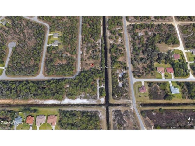 845 Glen Coy St E, Lehigh Acres, FL 33974 (#217044921) :: Homes and Land Brokers, Inc