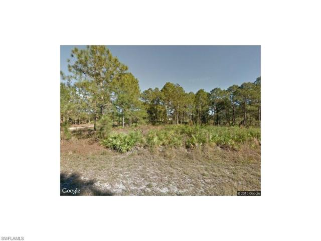 207 W 17th St, Lehigh Acres, FL 33972 (#217046218) :: Homes and Land Brokers, Inc