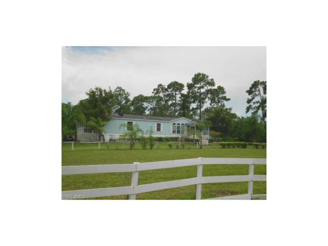 2250 Panama Ave, Clewiston, FL 33440 (MLS #217046484) :: The New Home Spot, Inc.