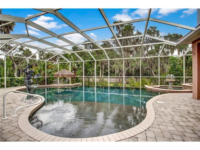 12800 Treeline Ct, North Fort Myers, FL 33903 (MLS #217046583) :: The New Home Spot, Inc.