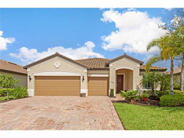 20406 Black Tree Ln, Estero, FL 33928 (MLS #217047184) :: The New Home Spot, Inc.