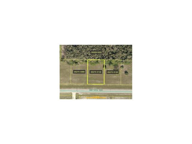 4129 NW 16th Ter, Cape Coral, FL 33993 (#217047652) :: Homes and Land Brokers, Inc