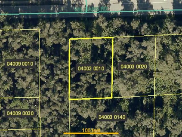 4121 Williams Rd, Estero, FL 33928 (MLS #217047799) :: The New Home Spot, Inc.