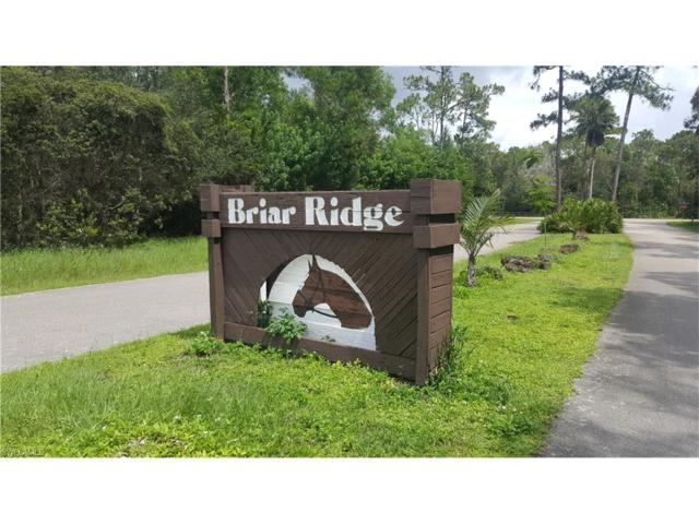 15306 Briar Ridge Cir, Fort Myers, FL 33912 (MLS #217048886) :: The New Home Spot, Inc.