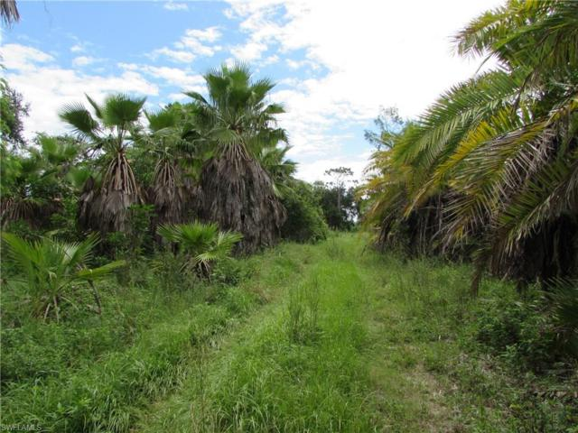 7200 Stringfellow Rd, St. James City, FL 33956 (MLS #217049494) :: The New Home Spot, Inc.