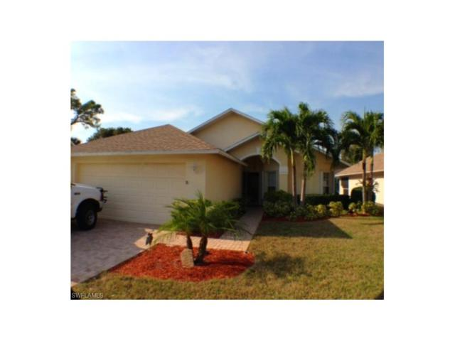 13381 Wild Cotton Ct, North Fort Myers, FL 33903 (MLS #217051040) :: The New Home Spot, Inc.