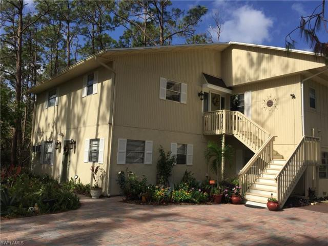 25272 Busy Bee Dr, Bonita Springs, FL 34135 (MLS #217051128) :: The New Home Spot, Inc.