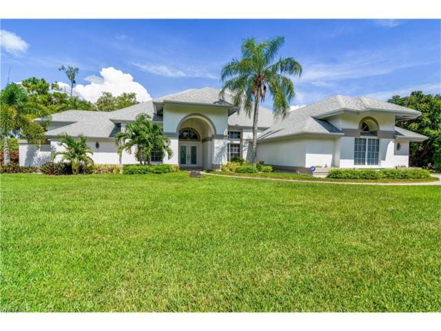 20321 Wildcat Run Dr, Estero, FL 33928 (MLS #217052015) :: The New Home Spot, Inc.