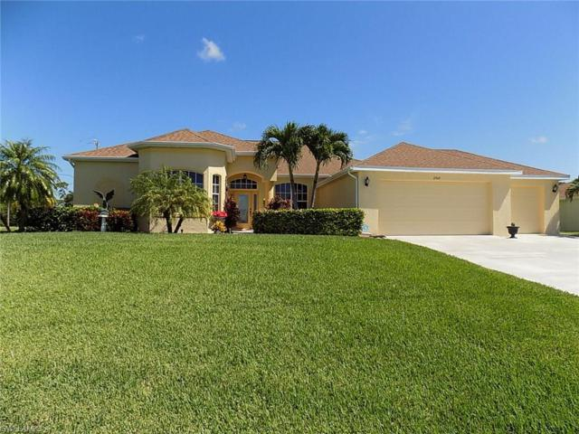 2949 NW 17th Ter, Cape Coral, FL 33993 (MLS #217052052) :: The New Home Spot, Inc.