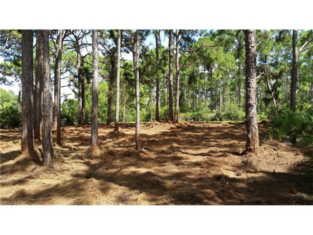 5357 Bluestone St, Port Charlotte, FL 33981 (MLS #217052939) :: The New Home Spot, Inc.